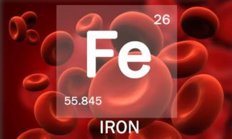 Iron: Functions, Food sources, Absorption and excretion